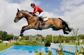 Show Jumping Psychology